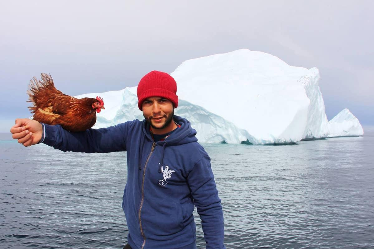 Mann segelt mit Huhn nach Grönland