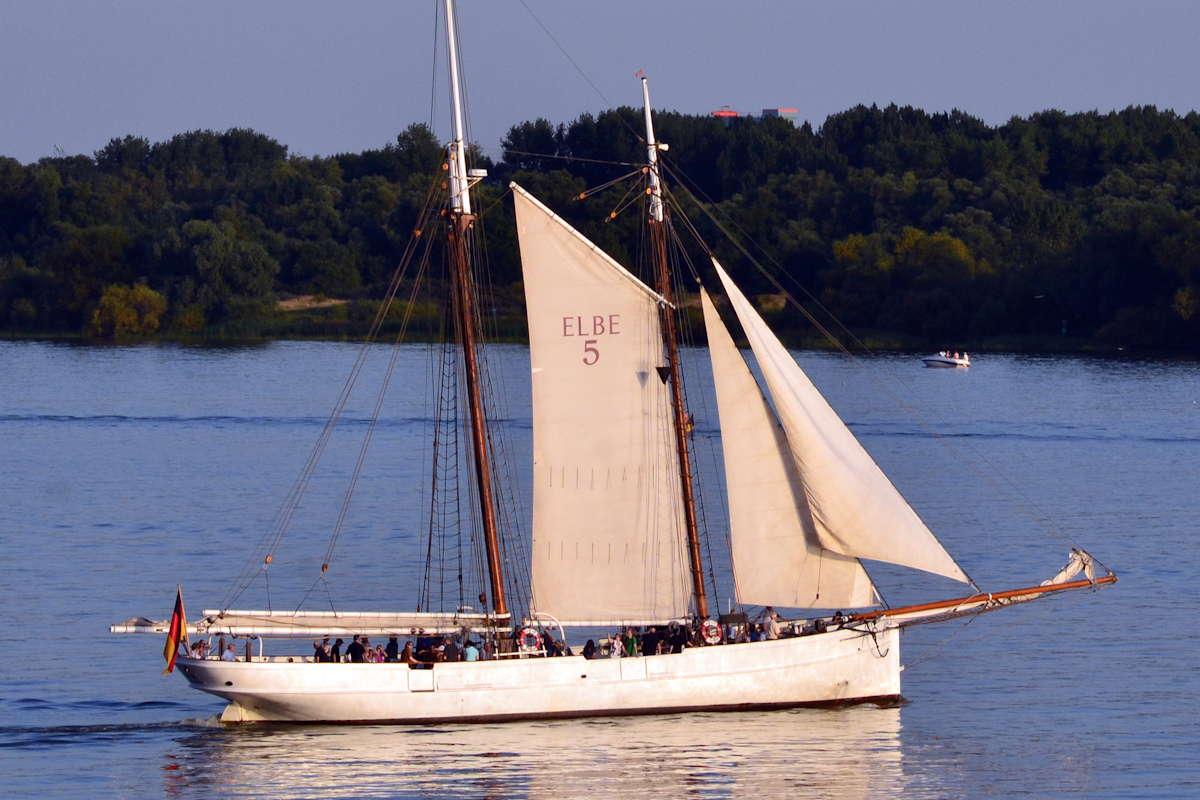 Lotsenschoner 5 Elbe