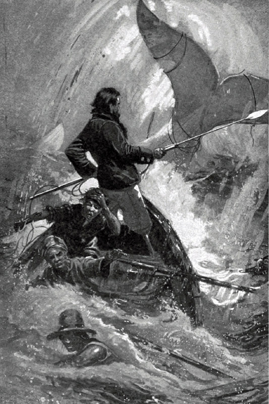 Owen Chase Essex Melville Moby Dick