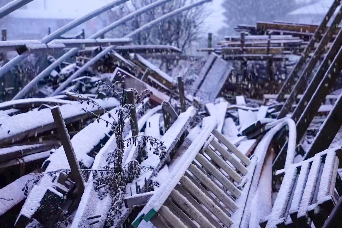 Tally Ho Schnee